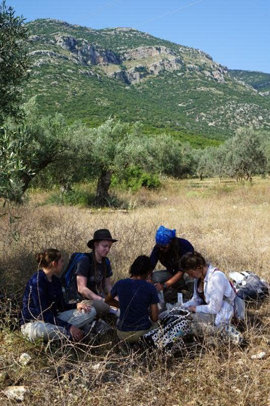 Liz's team takes a well-deserved break under an olive tree